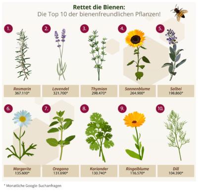 Beliebte Bienenfreundliche Pflanzen
